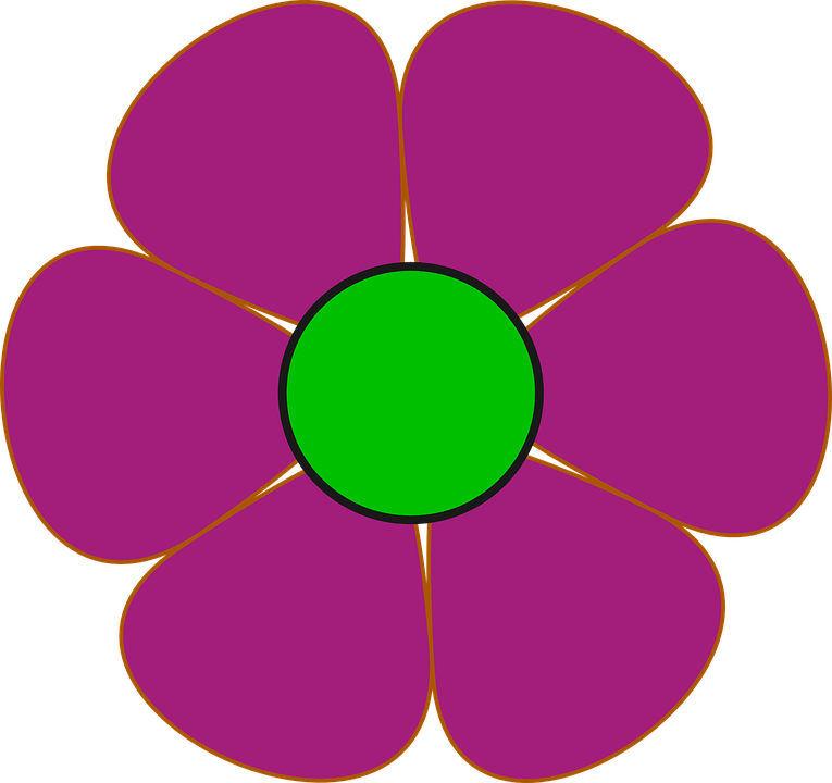 Margarida Flor Rosa Gráfico Vetorial Grátis No Pixabay