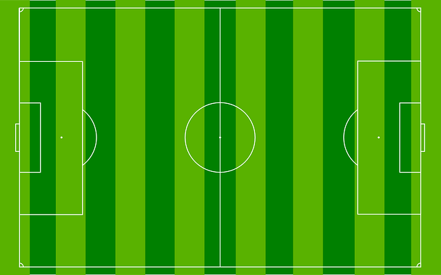 soccer pitch field  u00b7 free vector graphic on pixabay