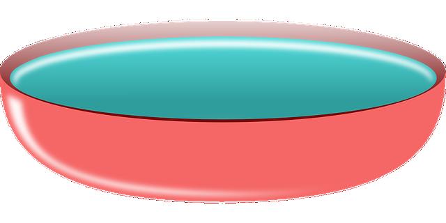 bowl pink water  u00b7 free vector graphic on pixabay