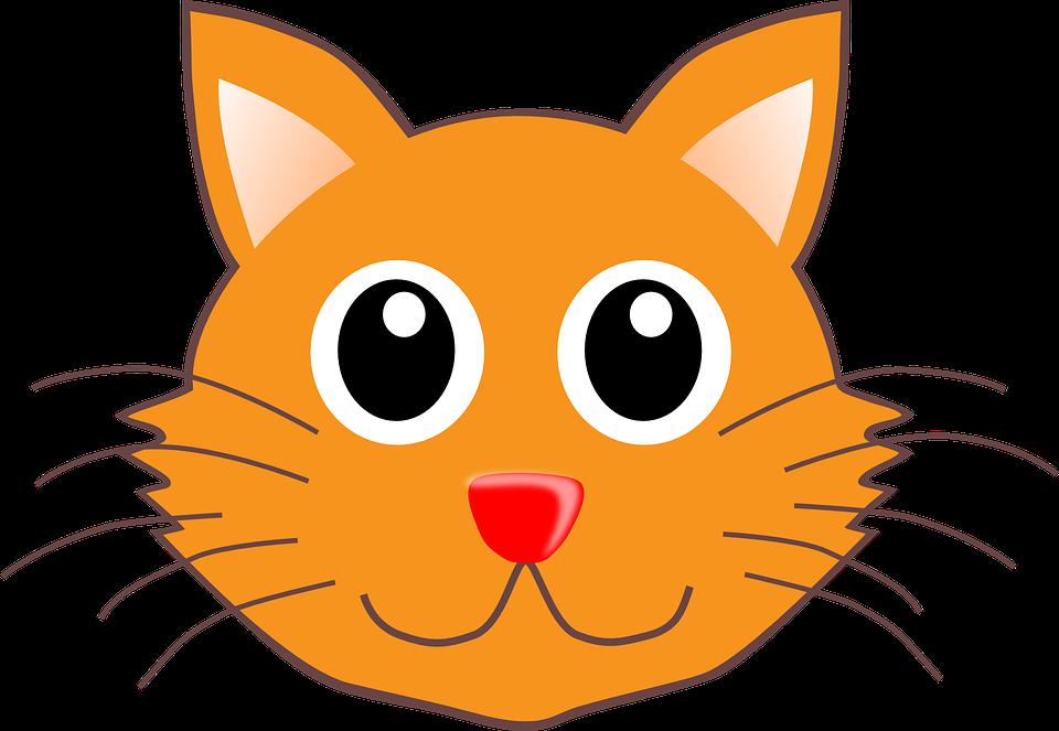 gato cabeça retrato gráfico vetorial grátis no pixabay