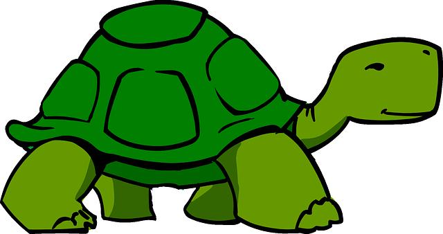 Tortuga Verde Shell · Gráficos vectoriales gratis en Pixabay