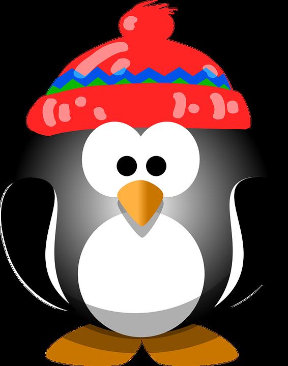 Penguin Bird Hat · Free vector graphic on Pixabay