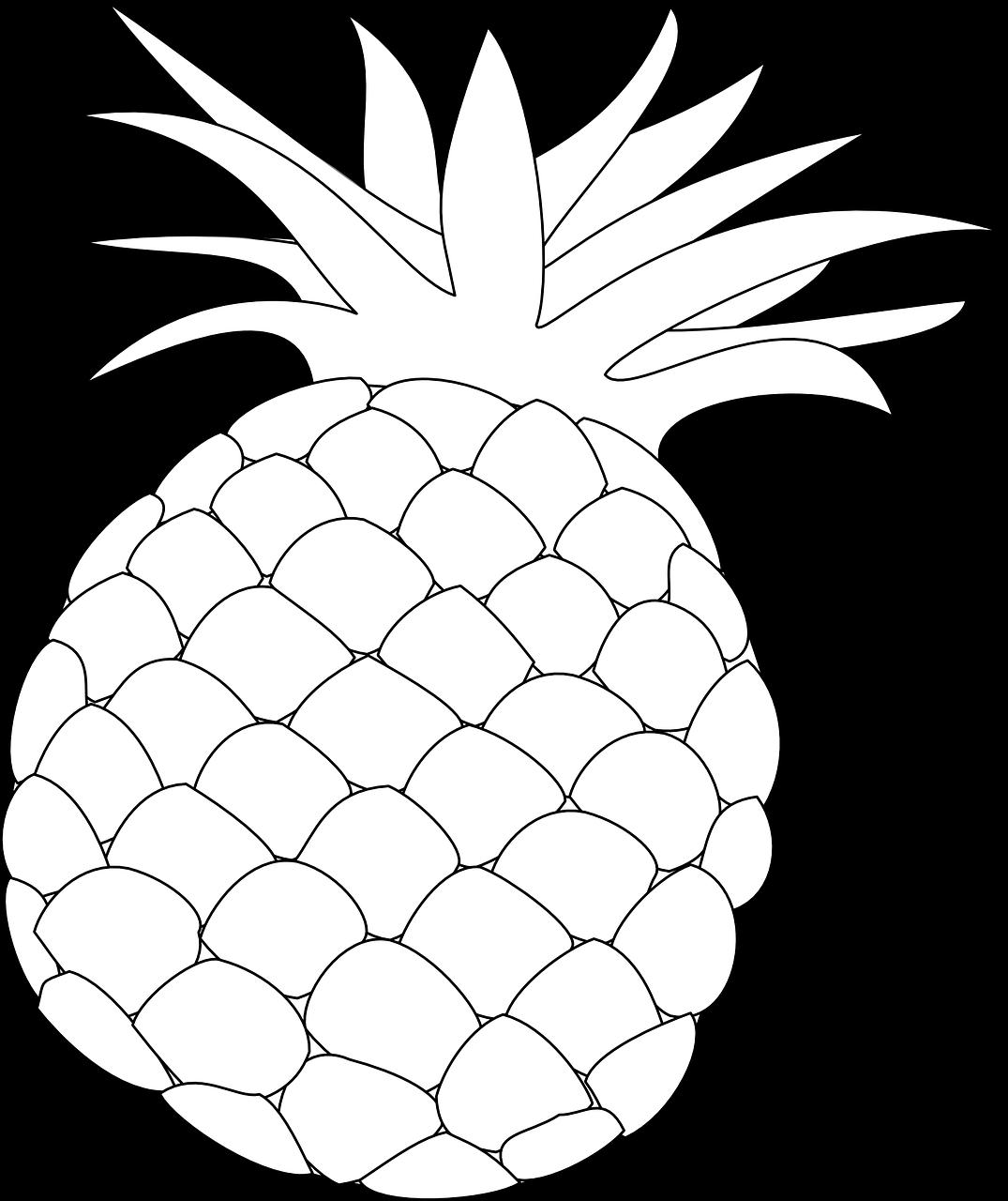виллы ананас раскраска для малышей всего