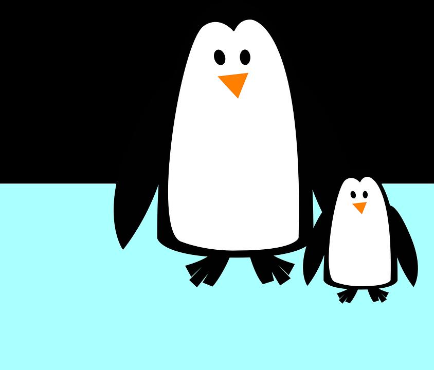 Image vectorielle gratuite pingouins des animaux image gratuite sur pixabay 304625 - Dessin anime les pingouins ...