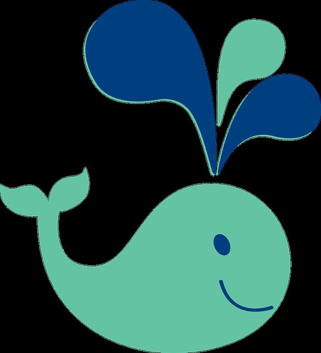 Whale, Cute, Ocean, Sea, Mammal, Spout