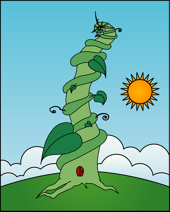 Beanstalk Stalk Creeper 183 Free Vector Graphic On Pixabay