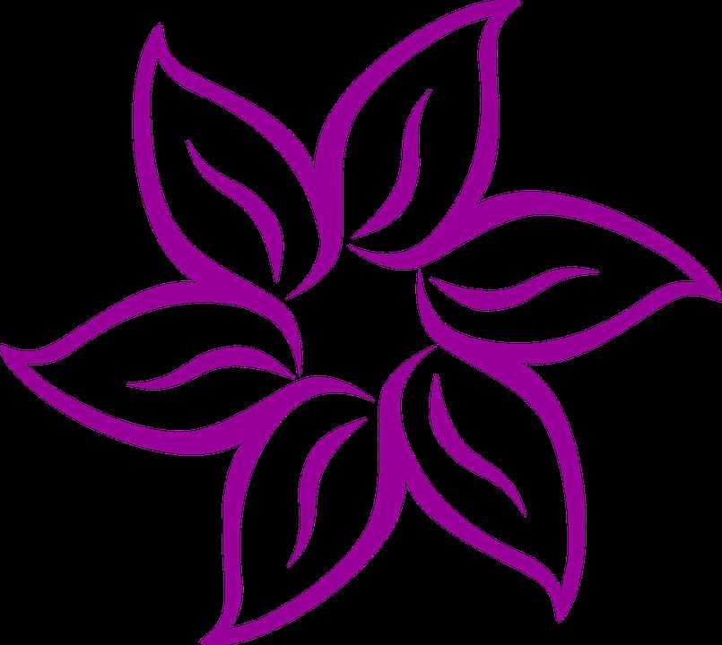 Fleur, Purple, Dessin, Pétales