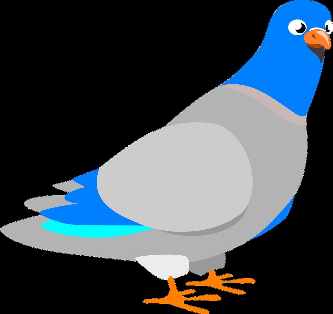 Голуби в картинках для детей, открытка днем рождения