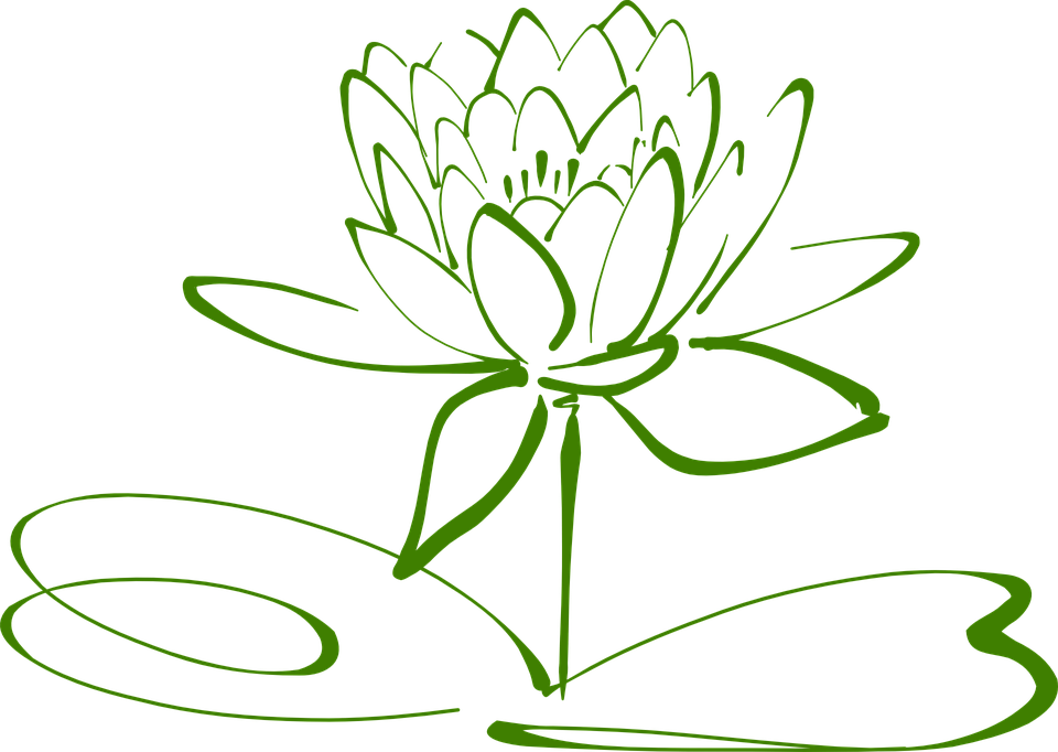lotusbl te lotus blume kostenlose vektorgrafik auf pixabay. Black Bedroom Furniture Sets. Home Design Ideas