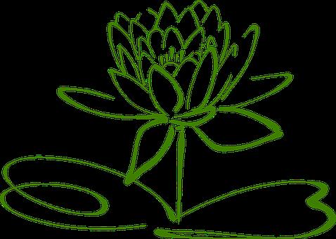 3000 Free Lotus Flower Images Pixabay