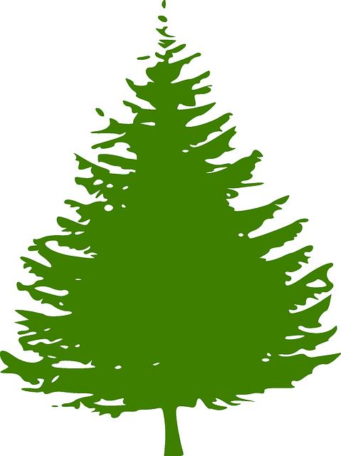 Free vector graphic: Pine, Tree, Christmas Tree, Green ...