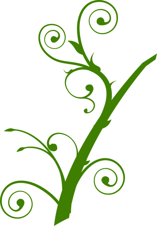 vector gratis planta hojas ramas silueta imagen