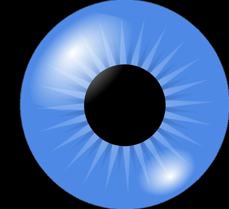 eyeball eye iris free vector graphic on pixabay rh pixabay com Iris Eye Clip Art Flower Clip Art