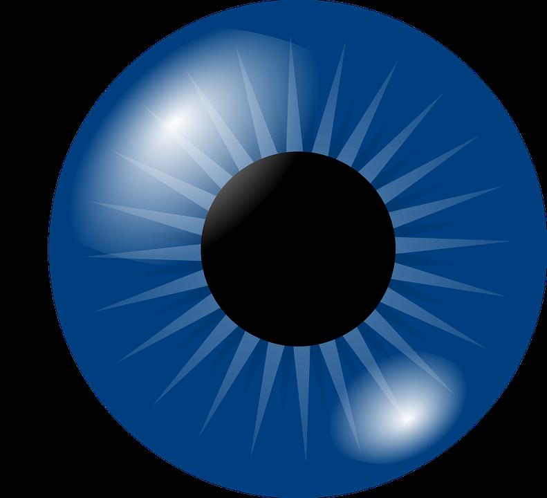 eyeball eye iris free vector graphic on pixabay rh pixabay com  flying eyeball vector