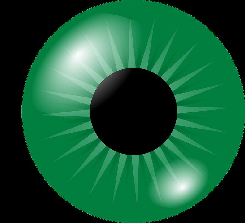 eyeball eye iris free vector graphic on pixabay rh pixabay com eyeball vector free download human eyeball vector