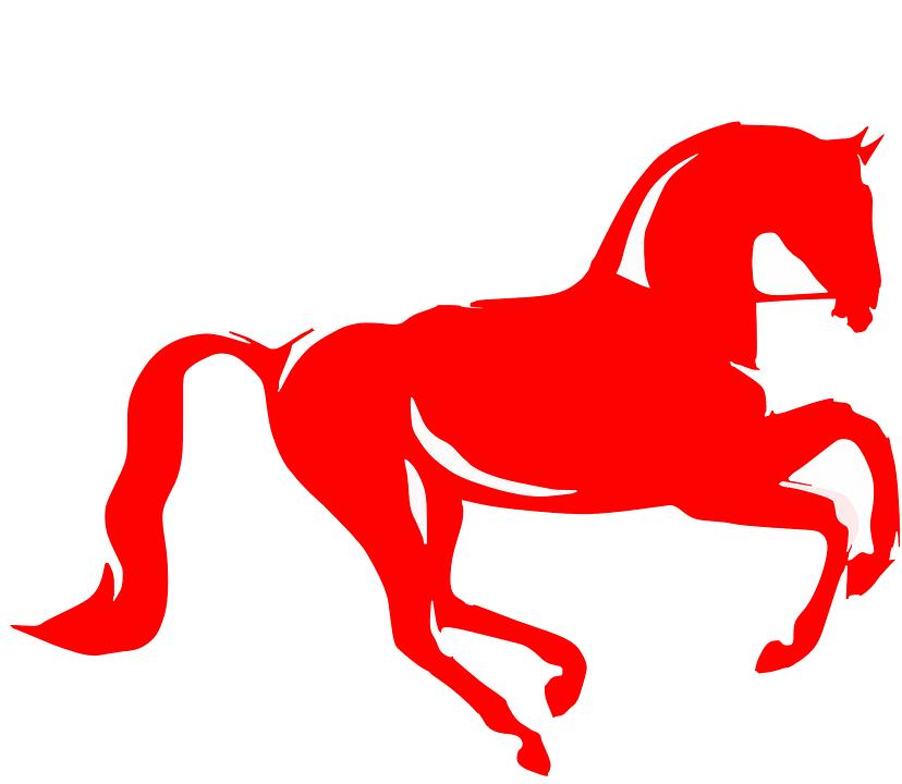 Fotos de caballos de carrera 2