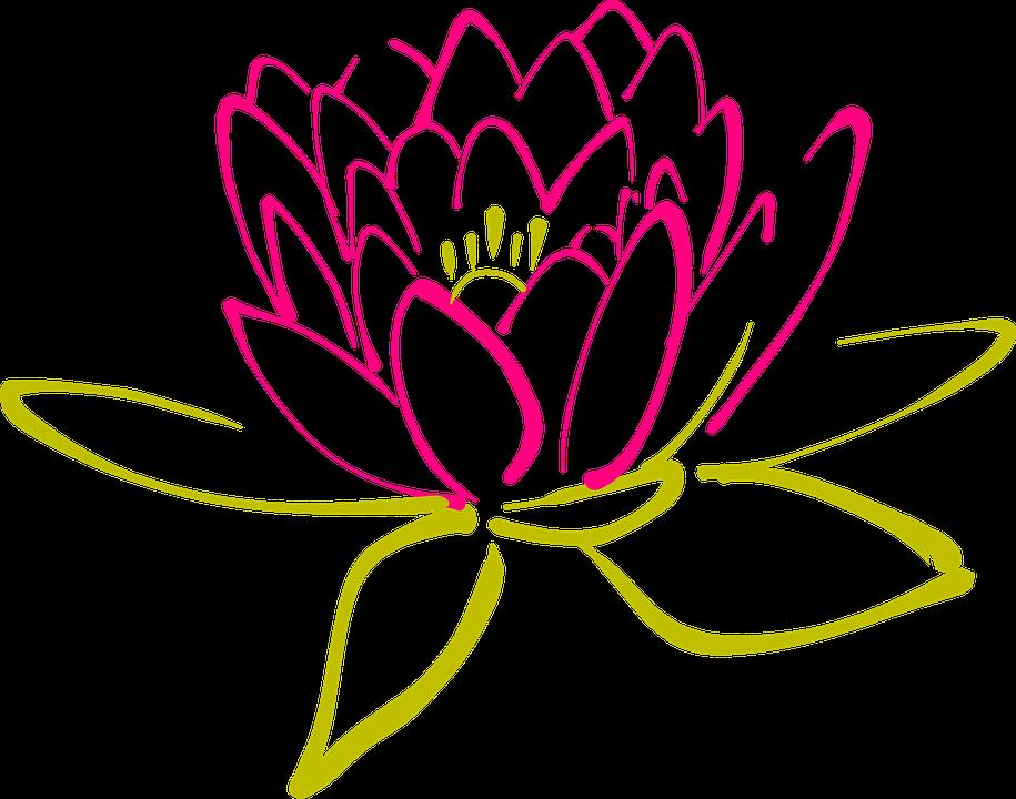 kostenlose vektorgrafik lotus blume seerose bl te kostenloses bild auf pixabay 304976. Black Bedroom Furniture Sets. Home Design Ideas