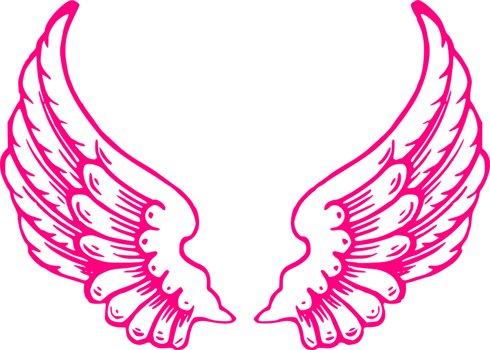 wings angel feathers of free vector graphic on pixabay rh pixabay com angel wings vector download angel wings vector free