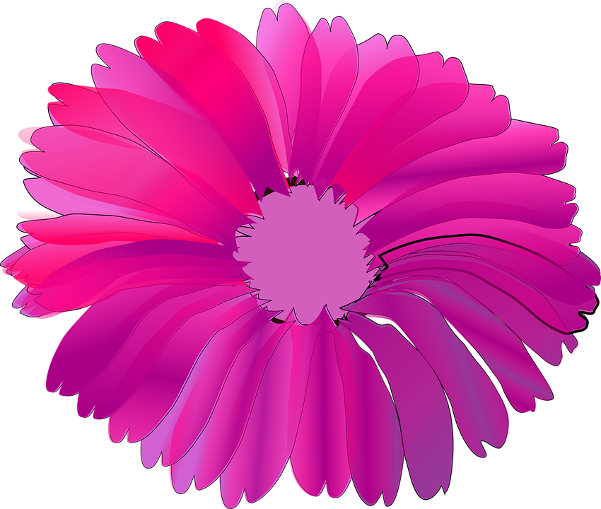 Flower pink huge free vector graphic on pixabay flower pink huge summer mightylinksfo