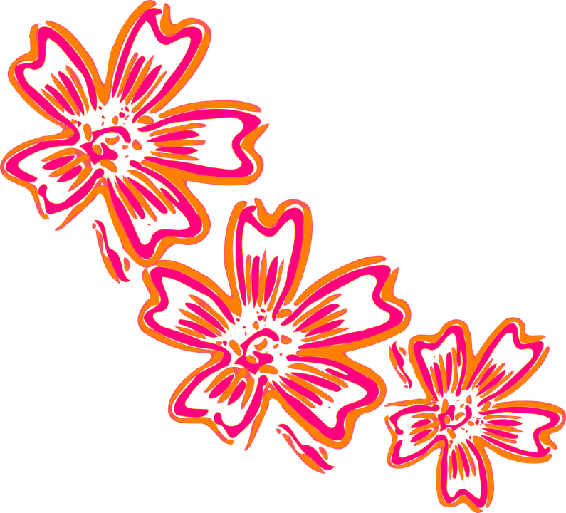Flowers orange pink free vector graphic on pixabay flowers orange pink design artwork floral mightylinksfo