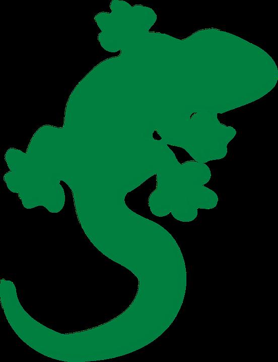 Eidechse Grun Gecko Kostenlose Vektorgrafik Auf Pixabay