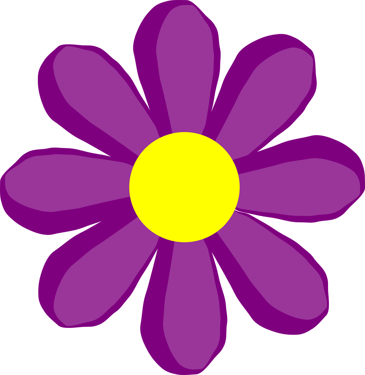 Flower Purple Daisy Free Vector Graphic On Pixabay