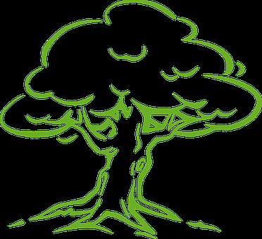 techniky kroužení stromů