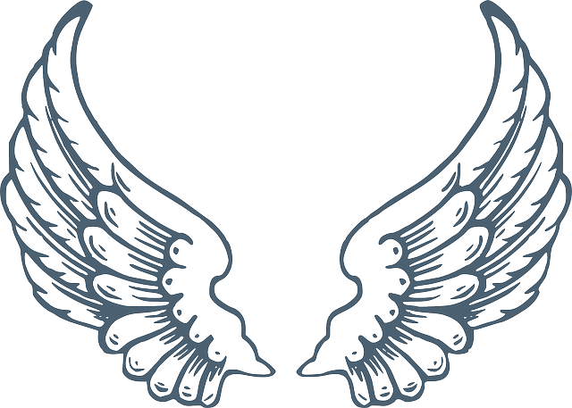 Wings Angel Huge 183 Free Vector Graphic On Pixabay
