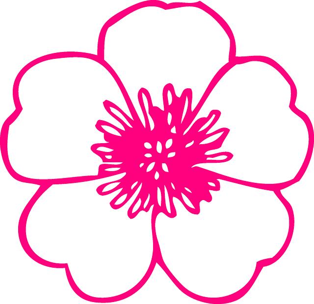 Image vectorielle gratuite Fleur, Rose, Plantes, Renoncule , Image gratuite sur Pixabay , 305646