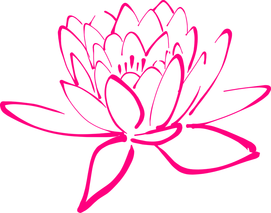 free vector graphic: flower, pink, blossom, pegals - free image on