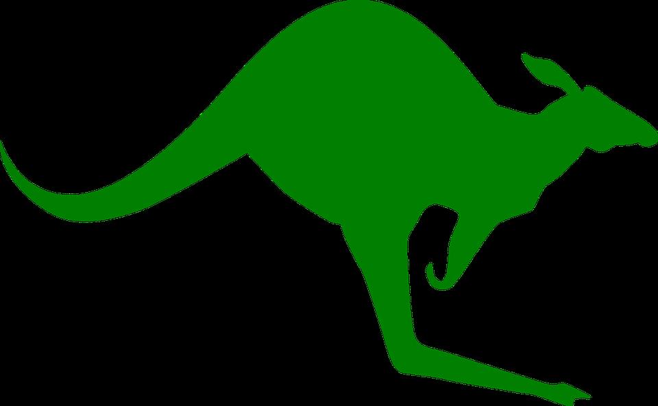Kangaroo Stand Jump 183 Free Vector Graphic On Pixabay