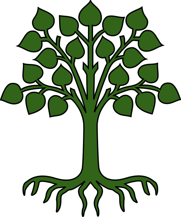 tree leaves roots free vector graphic on pixabay rh pixabay com vector trees plan vector tree silhouette
