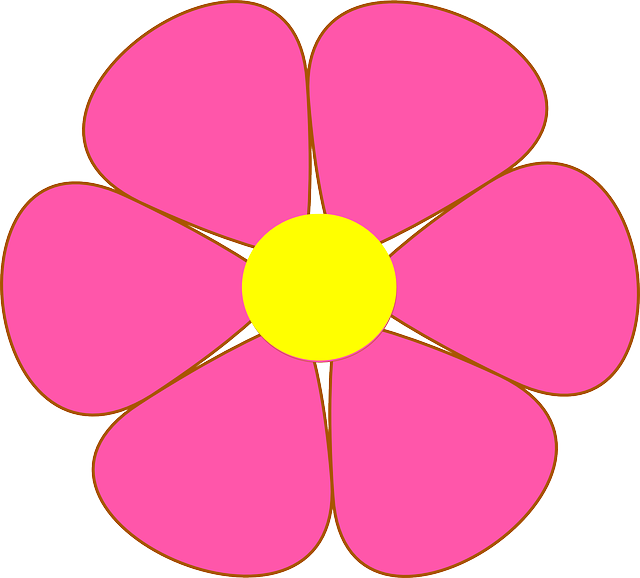 Flower Blossom Petals · Free vector graphic on Pixabay