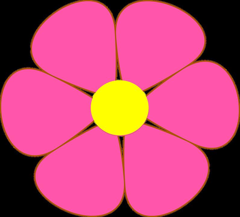 Flor Petalas Simetria Grafico Vetorial Gratis No Pixabay