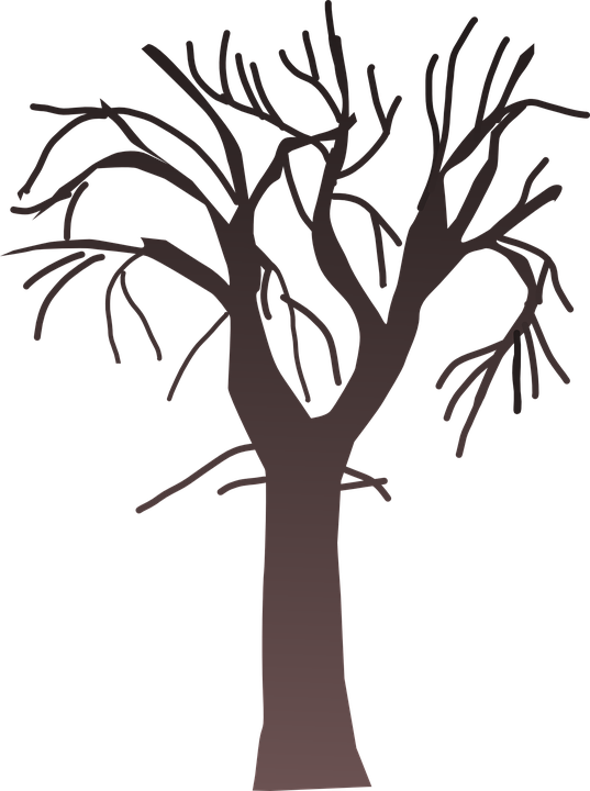 Bare Christmas Tree Svg.Tree Bare Branches Free Vector Graphic On Pixabay