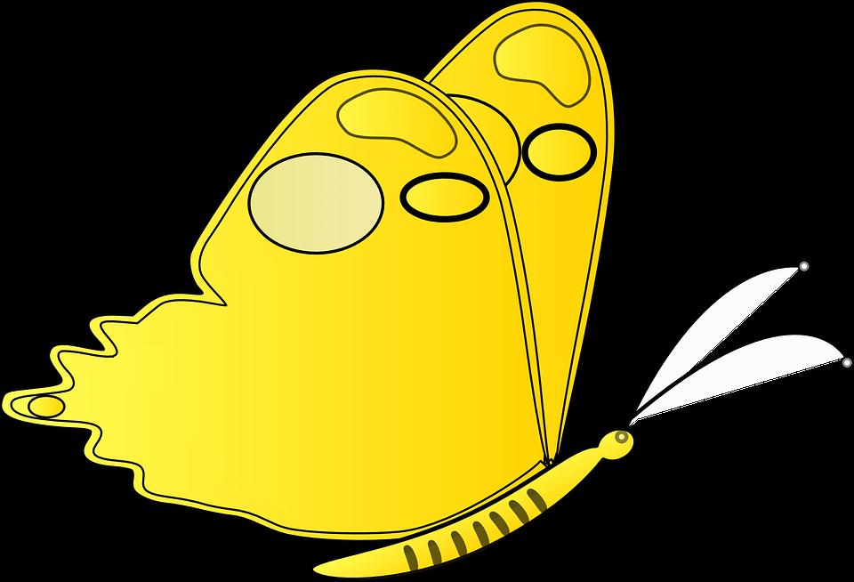Unduh 640  Gambar Animasi Kartun Kupu Kupu HD Terbaru