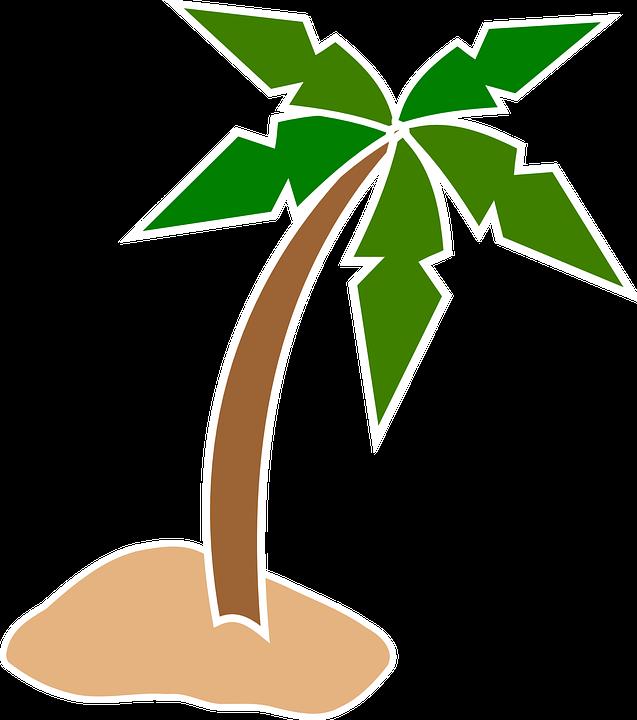 palm tree beach  u00b7 free vector graphic on pixabay