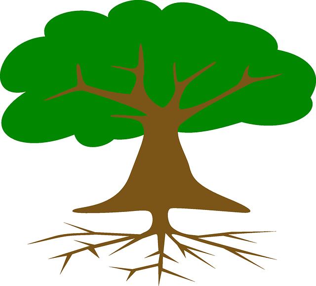 Rbol ra ces hojas secci n gr ficos vectoriales gratis for Arbol con raices y frutos