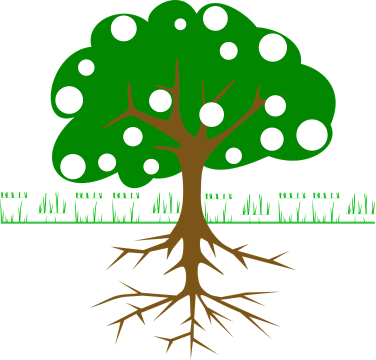 Baum Wurzeln Früchte · Kostenlose Vektorgrafik auf Pixabay