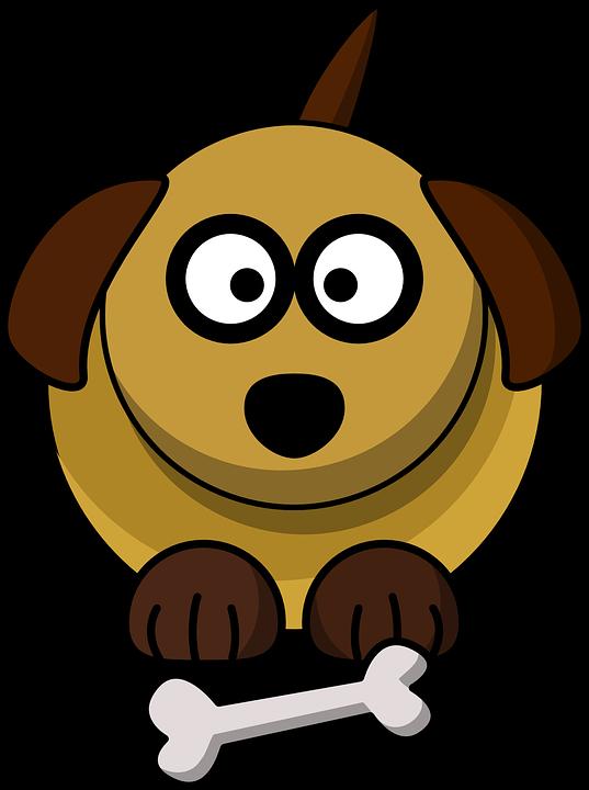 Pes Pet Kost Vektorova Grafika Zdarma Na Pixabay