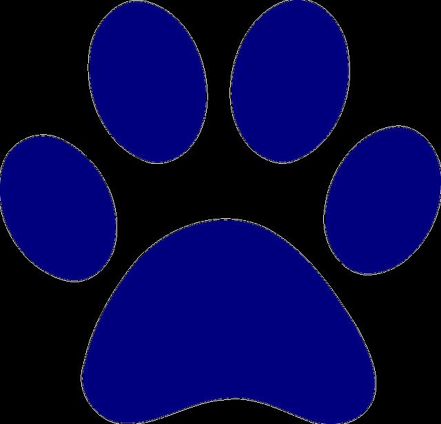 D 39 impression chien ours images vectorielles gratuites - Image patte de chien gratuite ...