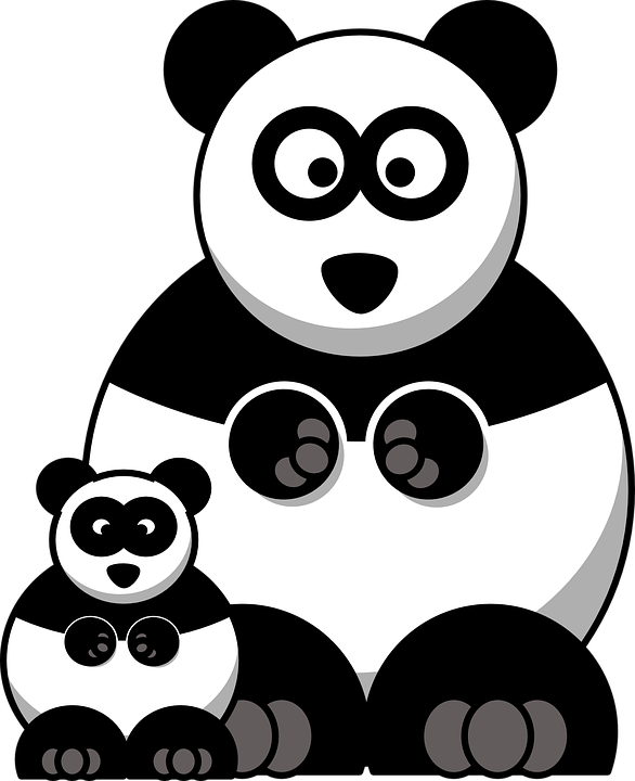 Panda Images Pixabay Download Free Pictures