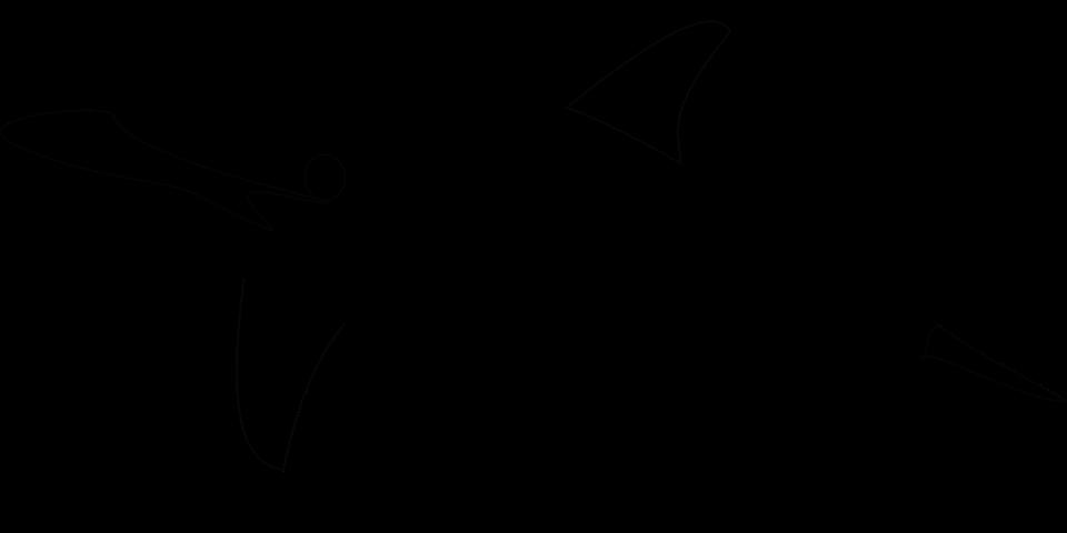 golfinho mamíferos do mar nadar gráfico vetorial grátis no pixabay
