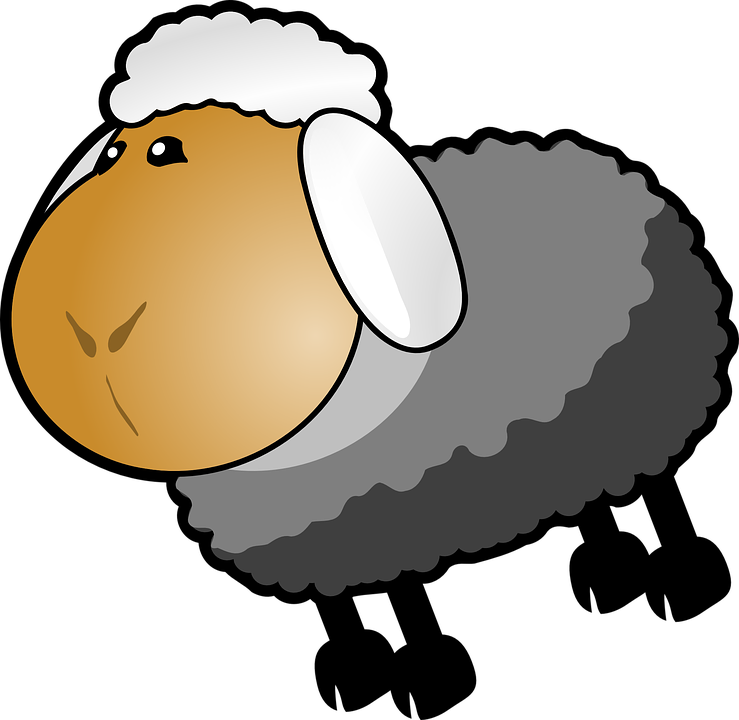 Sheep Cartoon White Free Vector Graphic On Pixabay