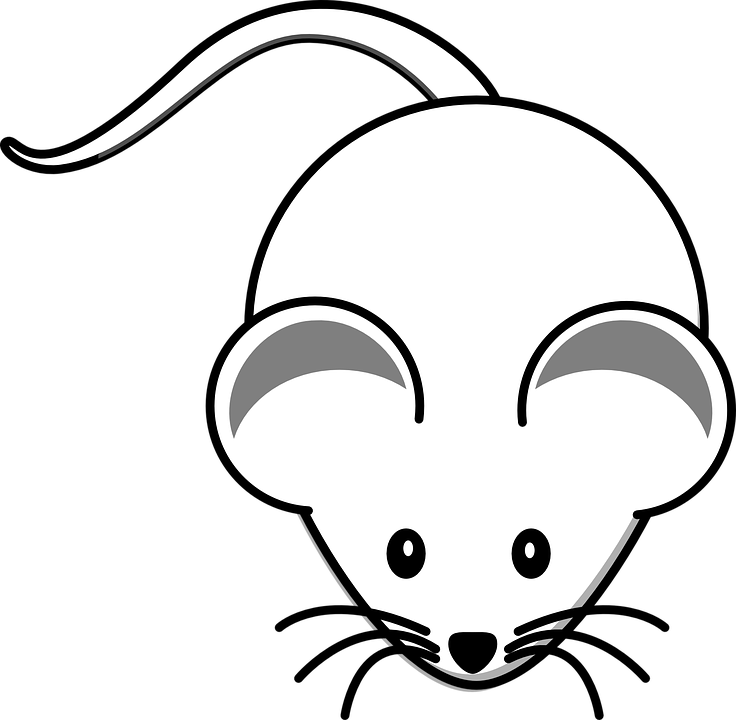 kostenlose vektorgrafik maus tier weiß schwanz ohren