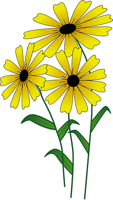 free vector graphic flowers yellow bright blossom