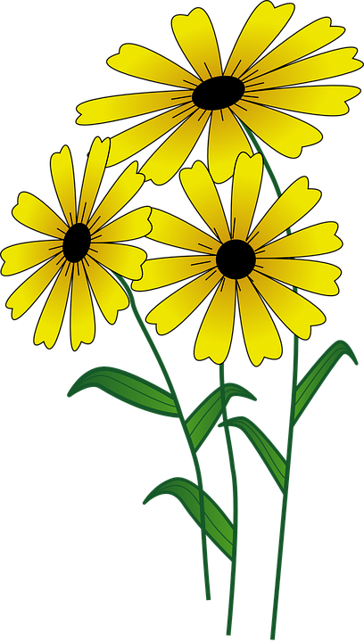free vector graphic flowers  yellow  bright  blossom Flower Border Clip Art Groovy Flower Clip Art