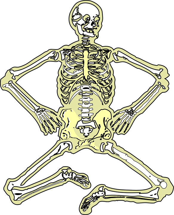 Skelett Toten Knochen · Kostenlose Vektorgrafik auf Pixabay