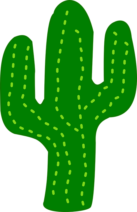 cactus flora desert free vector graphic on pixabay rh pixabay com cactus vector freepik cactus vector png