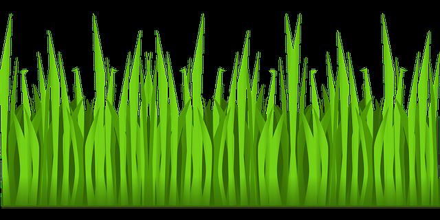 Рисунок трав